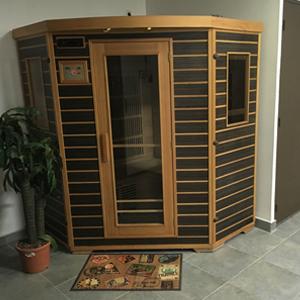 Sauna Vienne